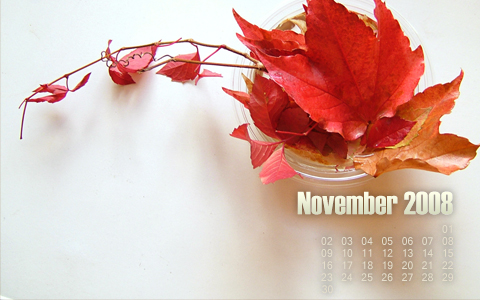 november 2008 prev November 2008 Desktop Calendar Wallpaper widescreen wallpaper november free fall desktop calendar 2008